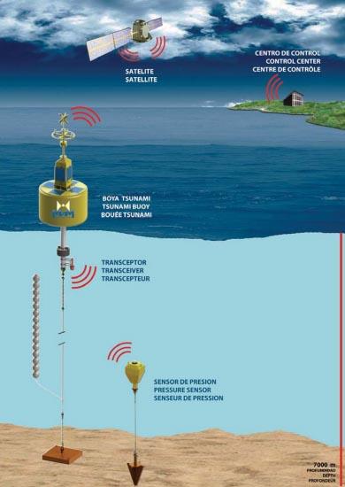 infografía sobre el sisteme de deteccción de tusnamis
