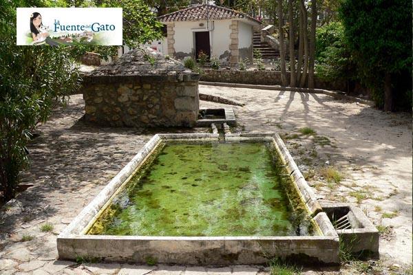 Foto del patio del Hotel Vegetariano de La Fuente del Gato