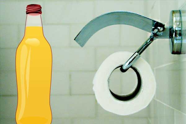 ahorrar agua con una botella de 2 litros en el deposito del retrete