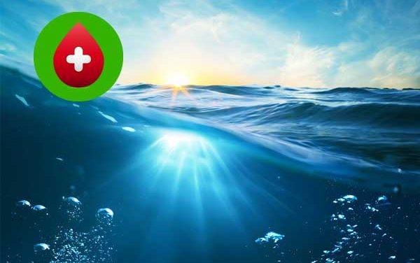 La Permacultura y la Eficiencia Hídrica: ahorro hasta el 40% y 50% en el consumo de agua.