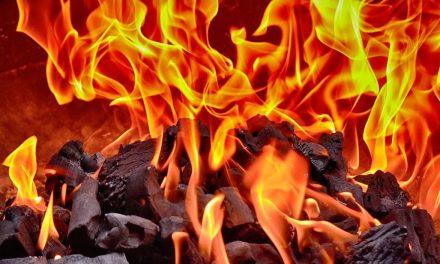 Descubre las alternativas ecológicas de calefacción.