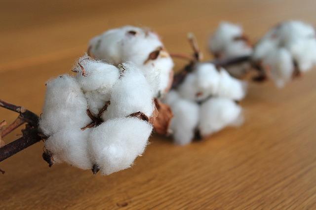 Tejidos sostenibles de algodón
