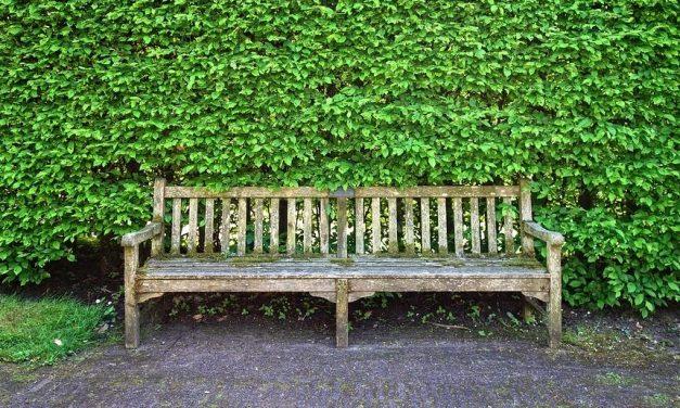 El mobiliario urbano ecológico en las ciudades modernas.