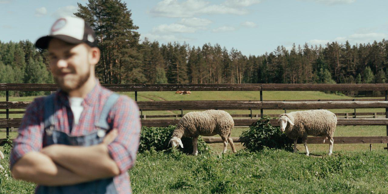 Qué es la ganadería ecológica