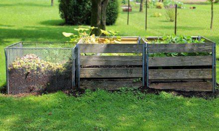 Las 5 ventajas del compostaje para el medioambiente